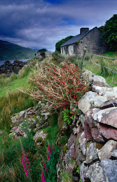 Connemara Photograph - Abandoned Cottage On The Famine Relief by Gareth Mccormack