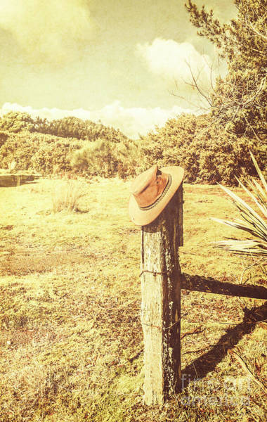 Photograph - Abandoned Cowboy Hat On Tree Trunk by Jorgo Photography - Wall Art Gallery