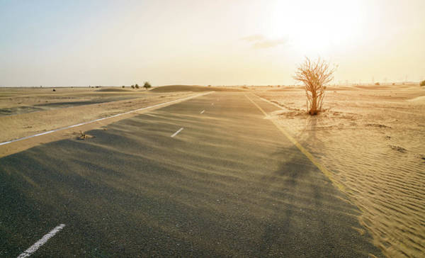 Wall Art - Photograph - Abandoned Desert Road by Alexey Stiop