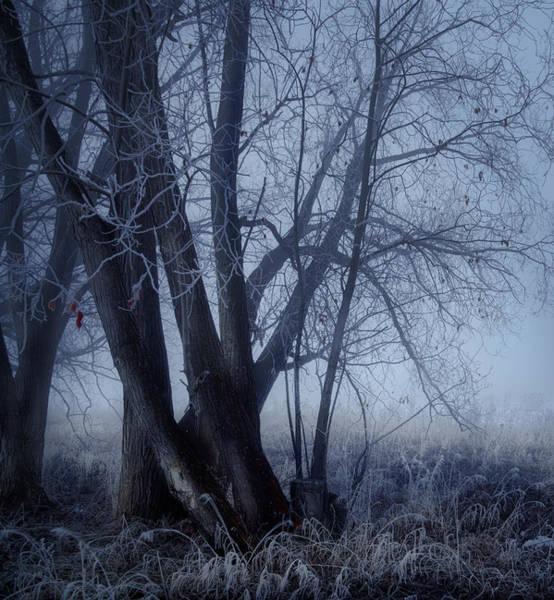 Photograph - Abandoned Farm by Dan Jurak