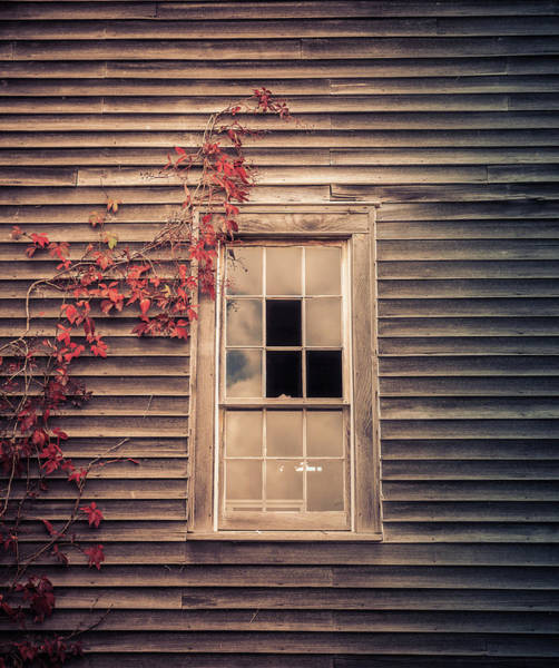 Photograph - Abandoned Home by Dan Sproul