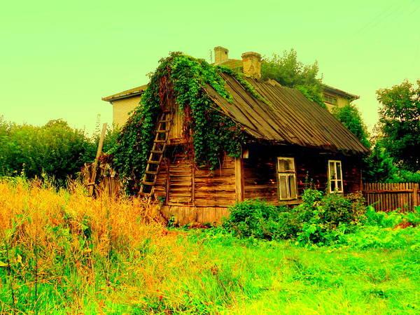 Gorecki Photograph - Abandoned Nest by Henryk Gorecki