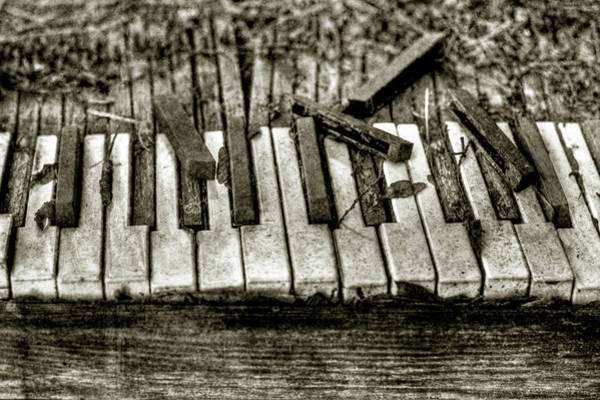 Damaged Photograph - Abandoned Piano Keyboard by Rex Lisman