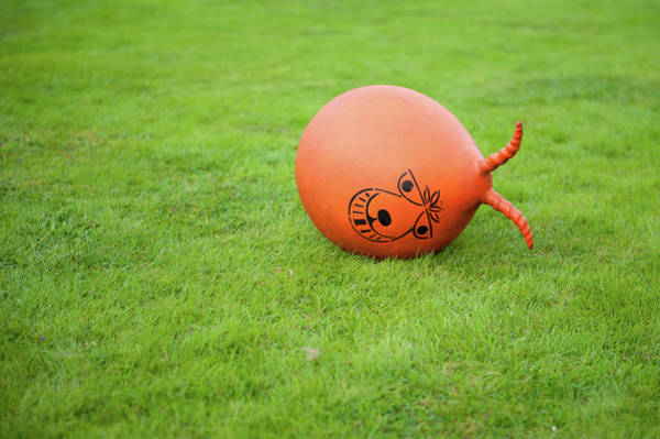 Photograph - Abandoned Space Hopper by Helen Northcott