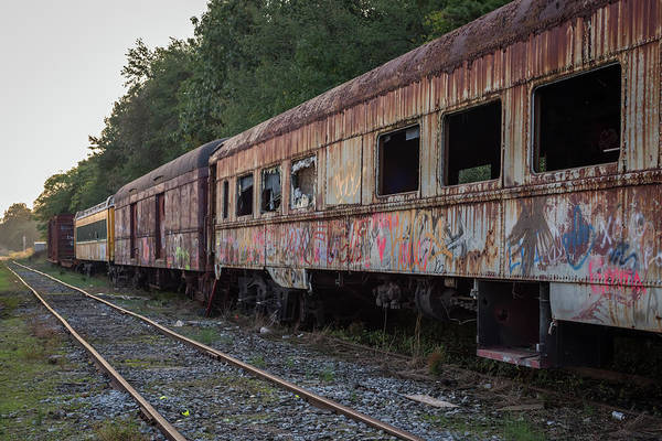 Photograph - Abandoned Train Cars  by Terry DeLuco