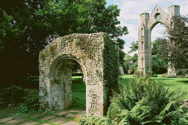 Photograph - Abbey Ruins In Walsingham by Paul Cowan