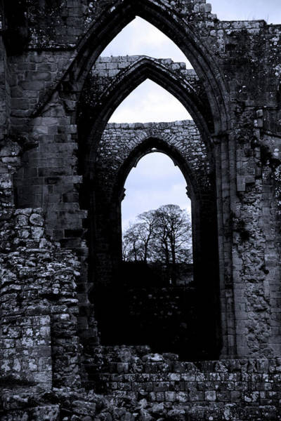 Wall Art - Photograph - Abbey Voices by Jez C Self