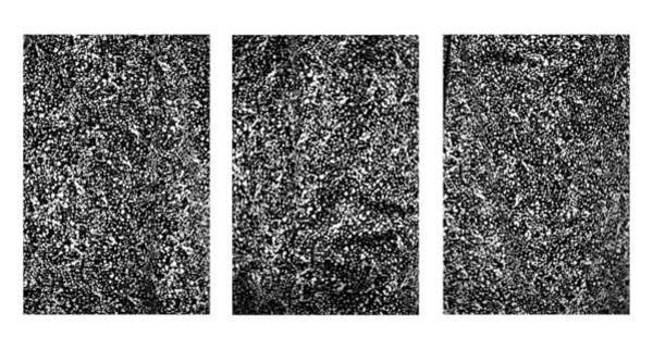 Photograph - Galaxy Triptych  by Marilyn Hunt