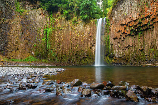 Wall Art - Photograph - Abiqua Falls by Patrick Campbell