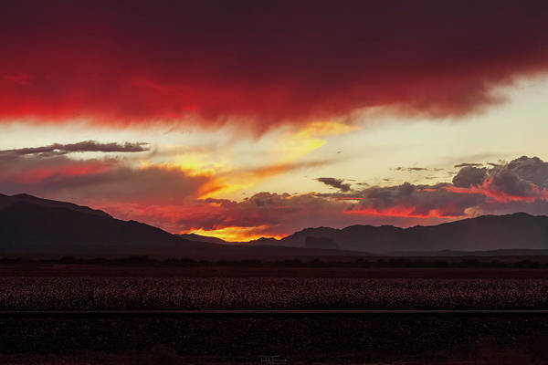 Photograph - Ablaze by Rick Furmanek