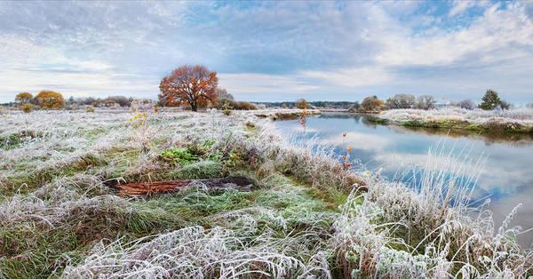 Photograph - About First Frost by Vlad Sokolovsky