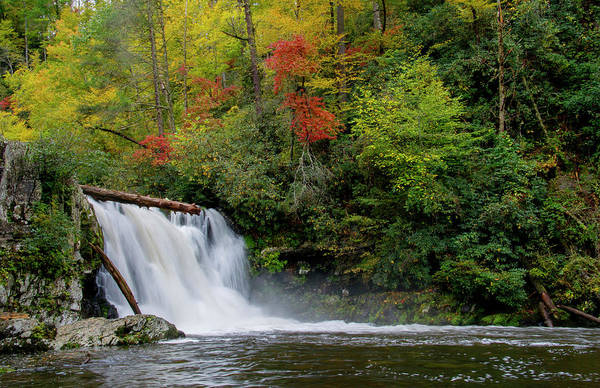 Photograph - Abrams Falls by Larry Bohlin