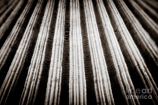 Photograph - Abstract #2 by Arnaldo Tarsetti