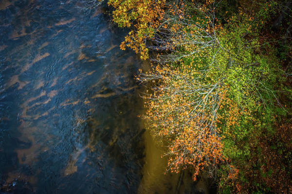 Photograph - Abstract Autumn Trees Aerial Near River by Alex Grichenko