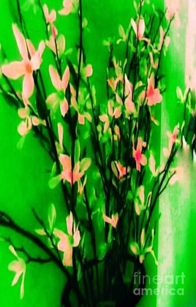 Wall Art - Photograph - Abstract Blossoms by Lisa Simmons