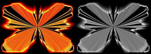 Digital Art - Abstract Butterflies 1 by Will Borden