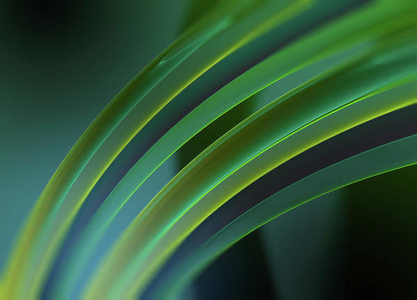 Wall Art - Photograph - Abstract Curved Translucent Green Tubes by Ikon Images