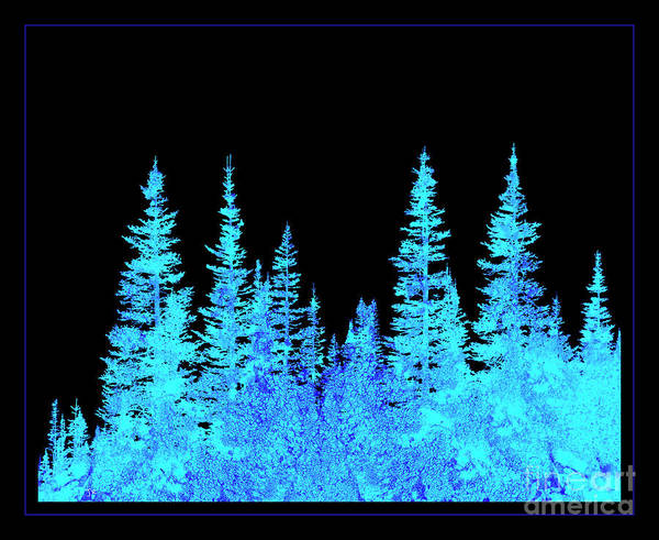 Wall Art - Photograph - Abstract Evergreen Forest by John Stephens