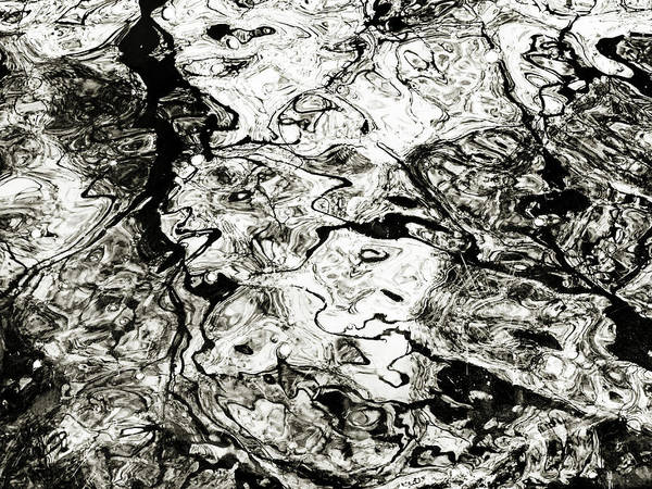Photograph - Abstract Expressionism In Nature by Marilyn Hunt