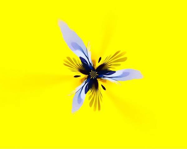 Digital Art - Abstract Flower 15 by Scott Wallace Digital Designs
