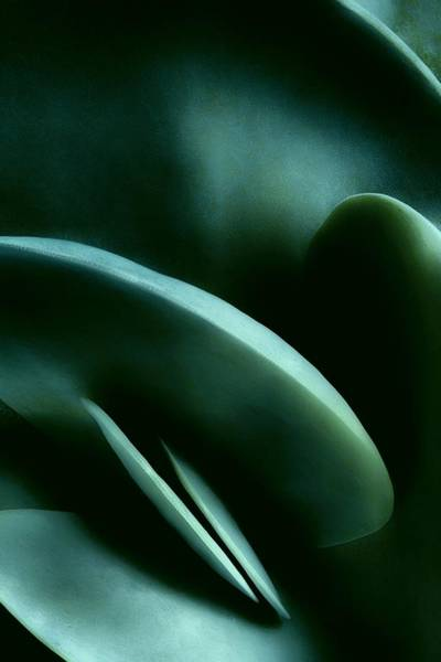 Photograph - Abstract In Green by Mark Fuller