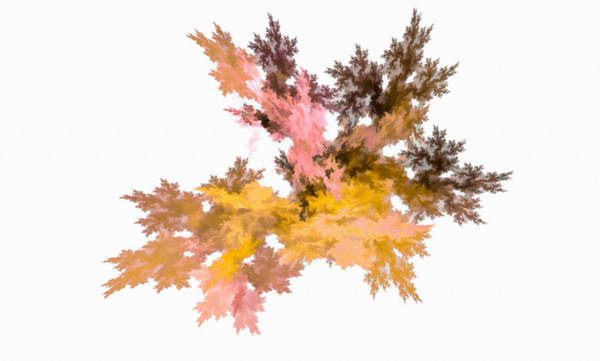 Digital Art - Abstract Leaf Autum by Don Northup