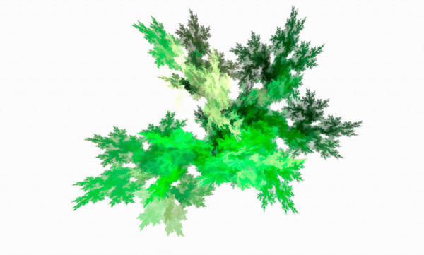Digital Art - Abstract Leaf Green by Don Northup