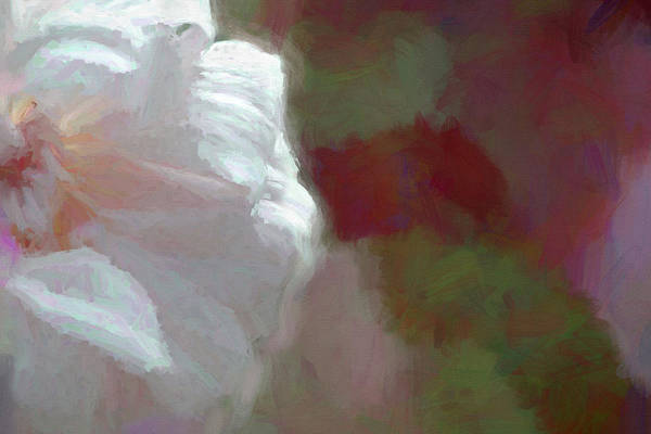 Digital Art - Abstract Rose Painted by Debbie Lund
