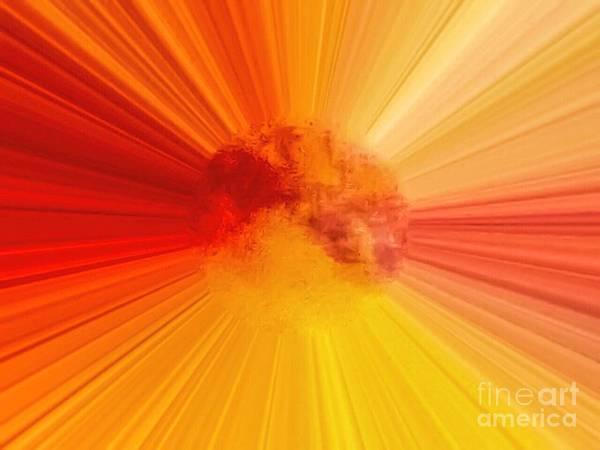 Photograph - Abstract Summer Sun by Debra Lynch