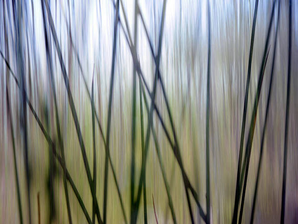 Texas A Photograph - Abstract Waterfall Vertical Lines by David Kozlowski