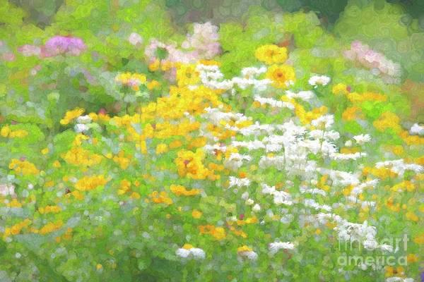 Wall Art - Photograph - Abstract Wildflowers II by Leslie Gatson-Mudd