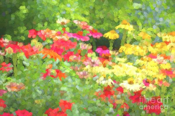 Wall Art - Photograph - Abstract Wildflowers 3 by Leslie Gatson-Mudd