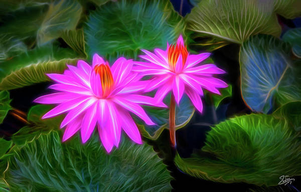 Digital Art - Abstracted Water Lilies by Endre Balogh