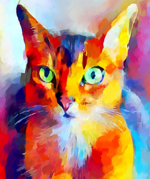 Wall Art - Painting - Abyssinian Cat by Chris Butler