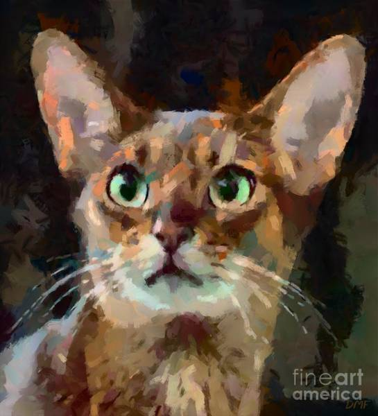 Wall Art - Painting - Abyssinian Cat by Dragica Micki Fortuna