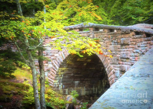 Photograph - Acadia National Park - Amphitheater Bridge by Anita Pollak