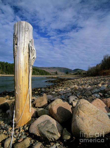 Photograph - Acadia National Park - Maine Usa by Erin Paul Donovan