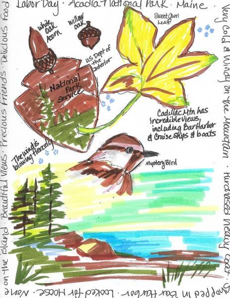 Wall Art - Painting - Acadia National Park by Susan Elizabeth Jones