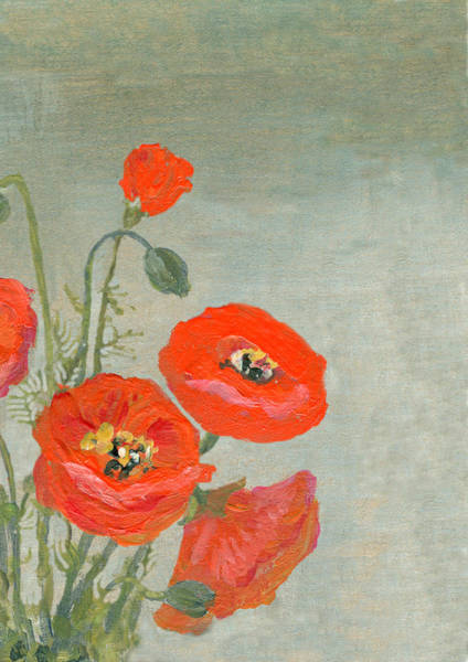 Poppies Digital Art - Acrylic Painted Red Poppies Border On by Mitza
