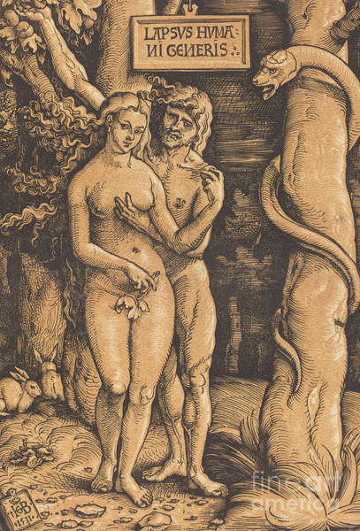 Wall Art - Drawing - Adam And Eve, 1511 Woodcut by Hans Baldung Grien