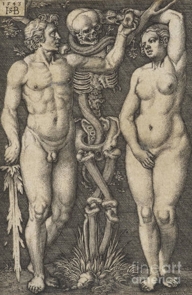 Satan Drawing - Adam And Eve, 1543 Copperplate by Hans Sebald Beham