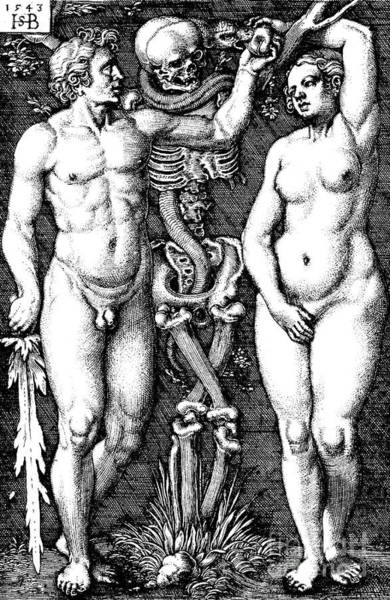 Satan Drawing - Adam And Eve, 1543  by Hans Sebald Beham