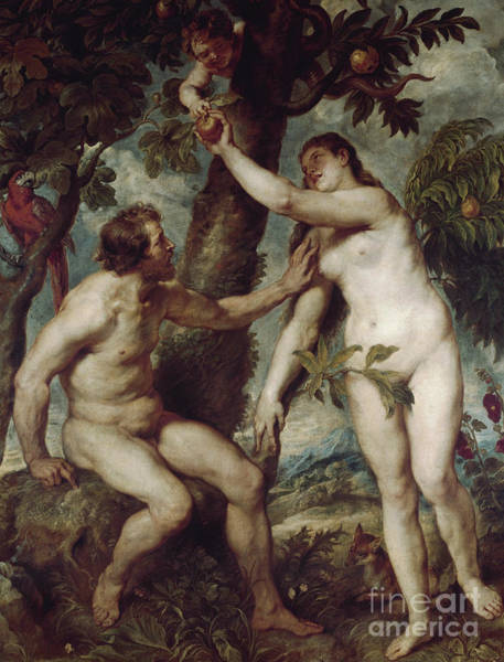 Apple Orchard Painting - Adam And Eve In The Earthly Paradise by Rubens
