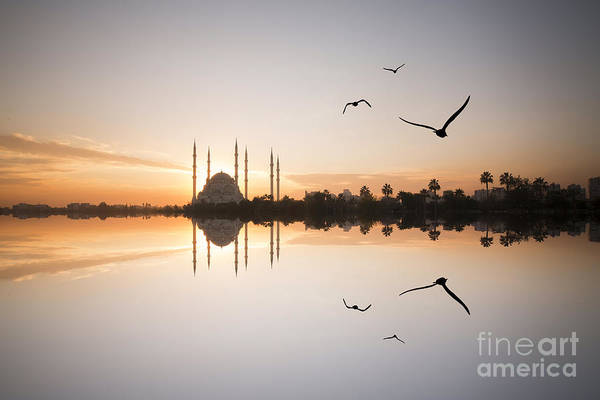 Wall Art - Photograph - Adana by Samet Guler