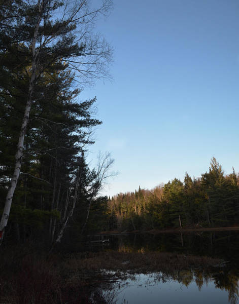 Photograph - Adirondack Evening by Maggy Marsh