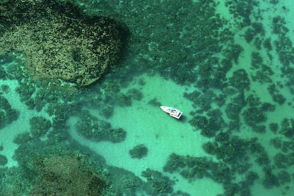 Photograph - Aerial Mauritius 004 by Karl Ahnee