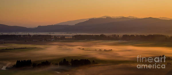 Wall Art - Photograph - Aerial Skagit Photography Morning In The Fields by Mike Reid