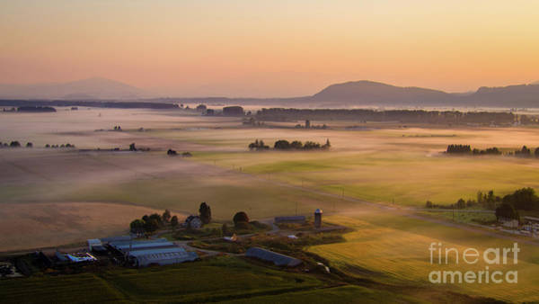 Wall Art - Photograph - Aerial Skagit Photography Sunrise Mist by Mike Reid
