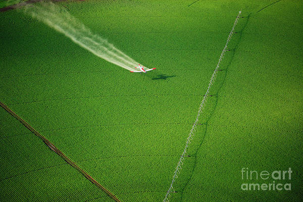 Wall Art - Photograph - Aerial View Of A Crop Duster Spraying A by B Brown
