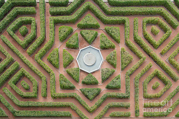 Aerial View Of A Hedge Maze Art Print